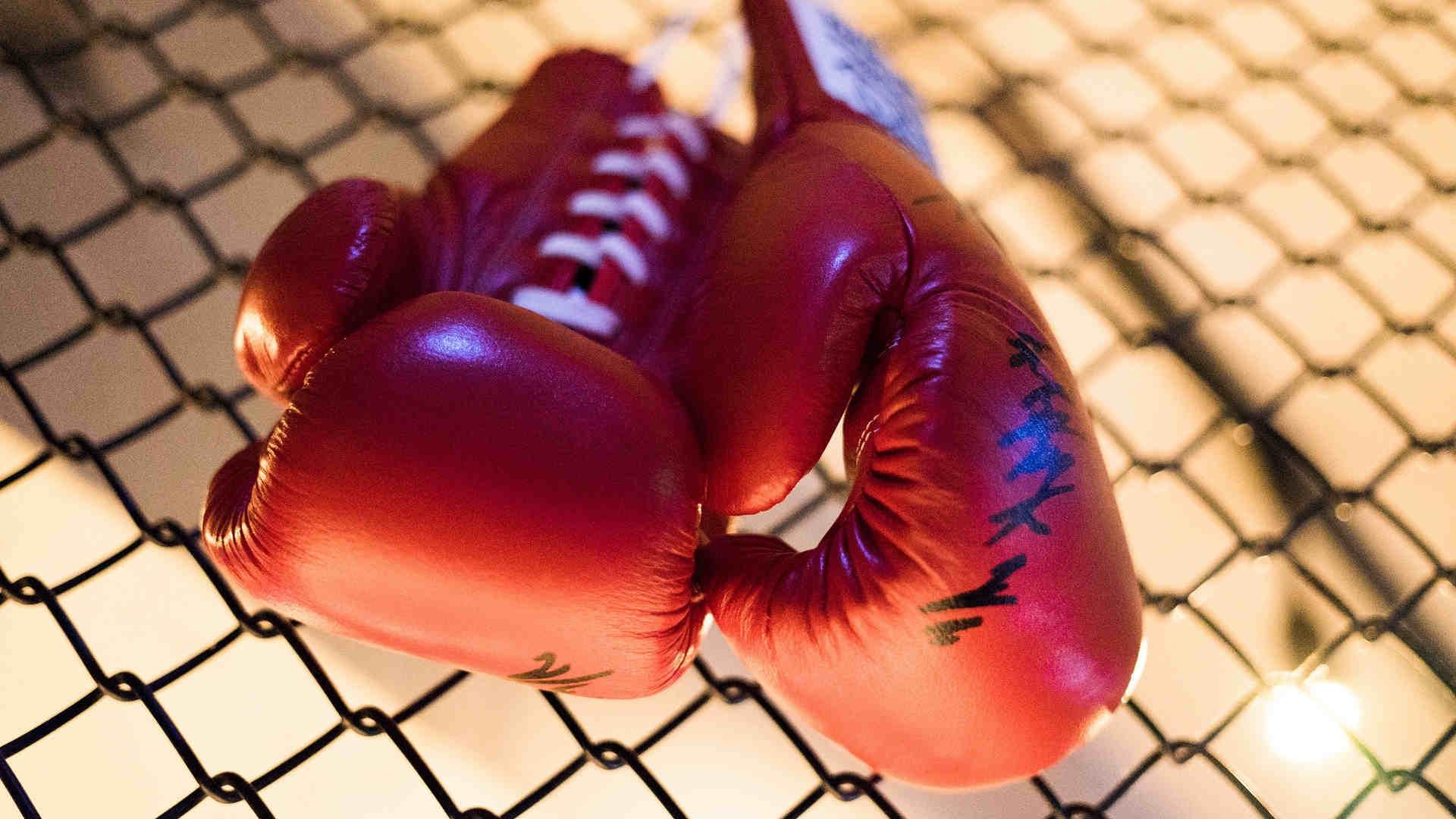 perchatki-boxerskie-1xbet